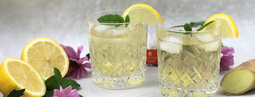 Vitality Lemon Ginger and Baobab Iced Tea